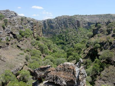 Isalo  National  Park  Madagascar