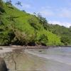 Isla Del Coco Chatham Beach