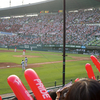 Jamsil Baseball Stadium - View