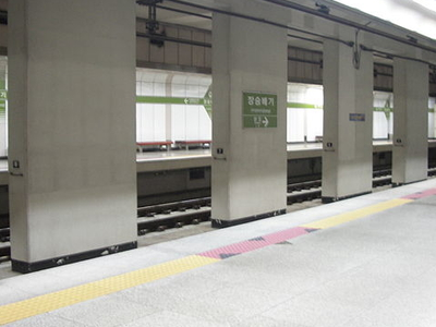 Jangseungbaegi Station Platform