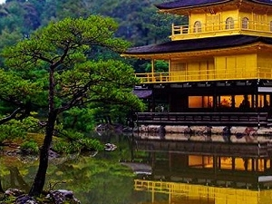 Japan Tours - 7 Nights 8 Days