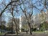 Jardim Bonfim Park