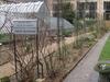 Jardin Botanique, Université Paris V