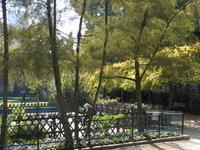 Jardin Catherine-Labouré