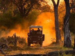 3 Day Okavango Delta Safari Photos