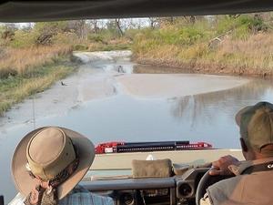 Maun - Chobe Safari 7 Nights 8 Days Fotos