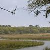 Jekyll Island Marsh