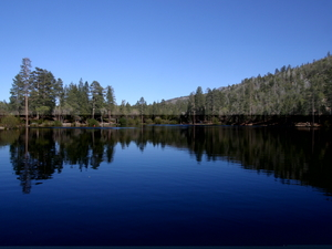 Jenks Lake