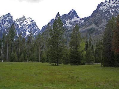 View From Jenny Lake Lodge - Grand Tetons - Wyoming - USA