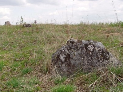 Jewish Kirkut Of Orla