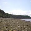 Fósseis Cliffs Joggins