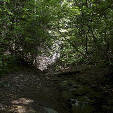 Johnny Creek Campground