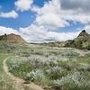 Jones Creek Trail - TRNP North Dakota