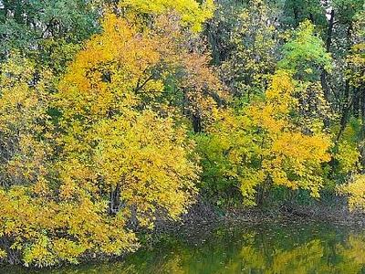 Jásztelek-Pusztamizse Nature Reservation