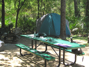 Juniper Springs Group Campground