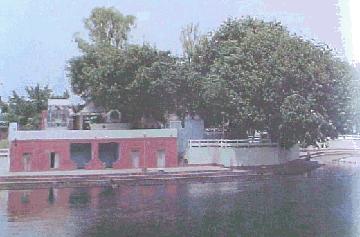Jyotisar