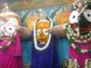Jagannatha Naya