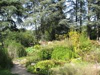 Botánica Jardines de Lyon