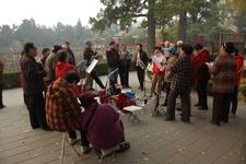 Elderly People Doing Cultural Activities