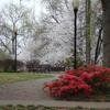 JohnHowell Park