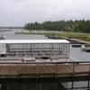 Kabetogama Boat Harbor And Tour Boat