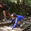 Kaimai Heritage Trail