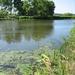 Kalamazoo River Michigan
