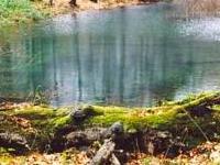 Kamień que Jaśliskami Reserva Natural