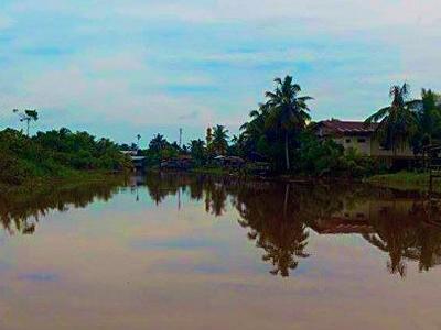 Kampung Pimping