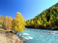 Kanas National Nature Reserve In Fall