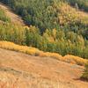Kanas National Park View