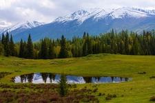 Kanas Reserve - Xinjiang