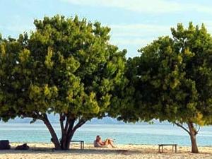 Kanawa Isla