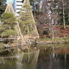 Pond Of Kansen-en