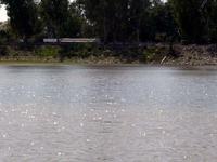 Karnal Lake