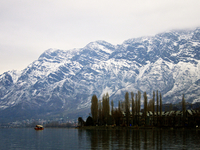 Kashmir Snow Packages