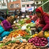 Kathmandu - Vegetable Vendor