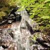 Kawang Forest Centre - Waterfall