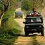 Kaziranga National Park Safaris