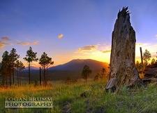 Kendrick Peak Sunset - Flagstaff AZ