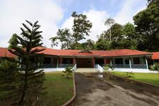 Kenong Rimba Park - Pahang