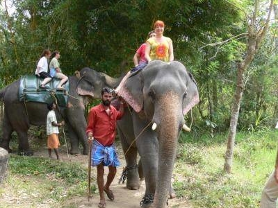 Kerala Elephant Ride