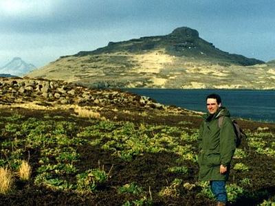 Kerguelen Cabbages On Mayes Island