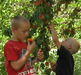Kids - Orchards At Capitol Reef National Park - USA