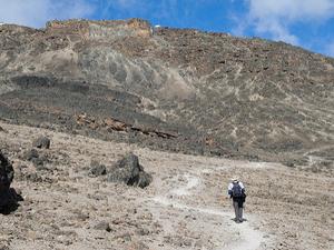 Kilimanjaro Machame Route - 6 And 7 Days Tour Fotos