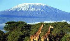 Kilimanjaro National Park Mountain