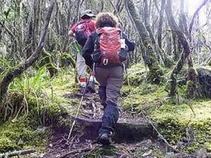 Kilimanjaro Umbwe Rota
