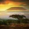 Climb Kilimanjaro: Ruta Marangu