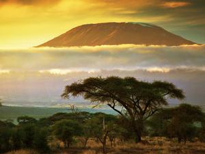 Kilimanjaro subida: Marangu Rota