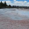 King Geyser - Yellowstone - USA